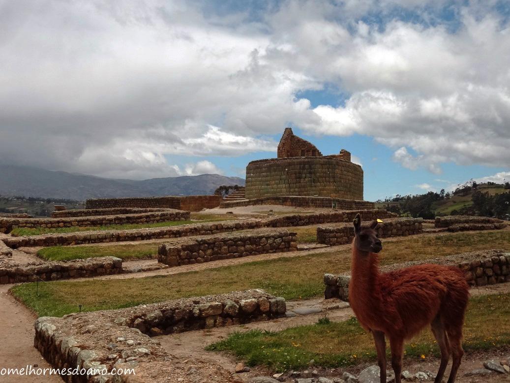 Ingapirca: uma aula de história da cultura inca no Equador