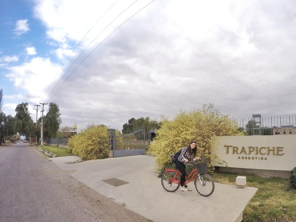 Vinícolas em Mendoza: um tour alcoólico de bicicleta