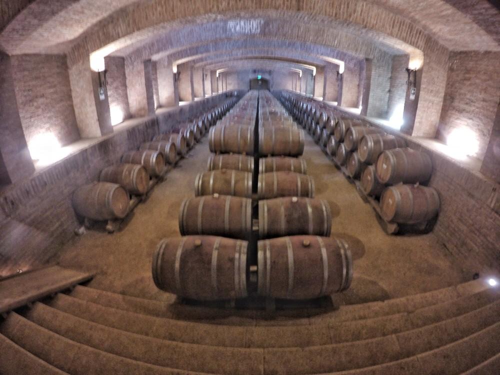 As 5 melhores viagens para os amantes de vinho na América do Sul