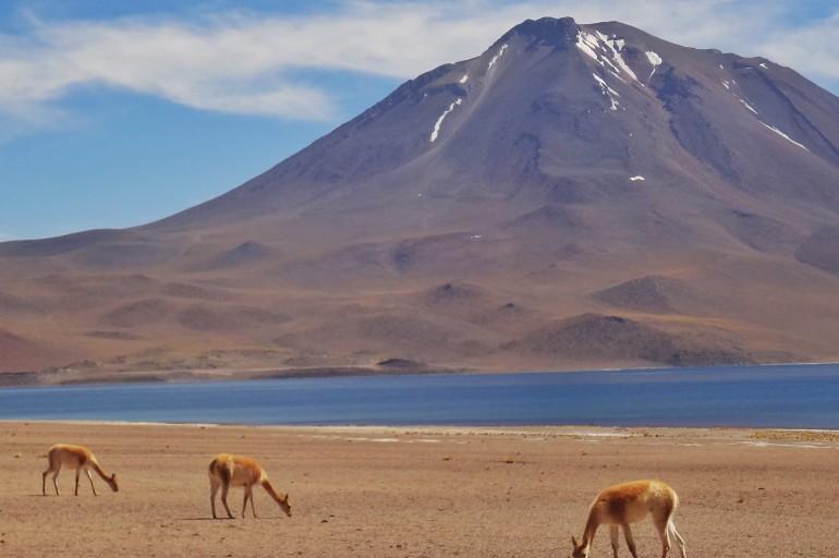 Roteiro para o Atacama? 4 opções pra você!