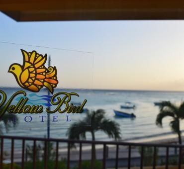 Dica de hospedagem em Barbados: Yellow Bird Hotel